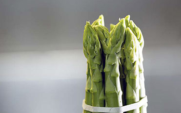 Sorting of green asparagus in bundles with spears of exactly the same length