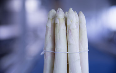 Efficient sorting of green and white asparagus